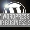Why Choose WordPress for Your Business Site